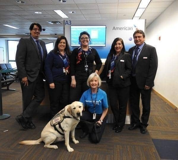 American Airlines dog