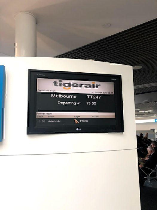 Tiger Air review