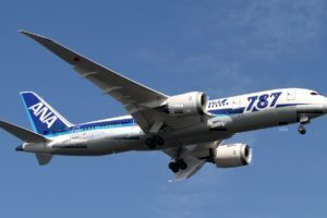ANA B787- 8 Dreamliner