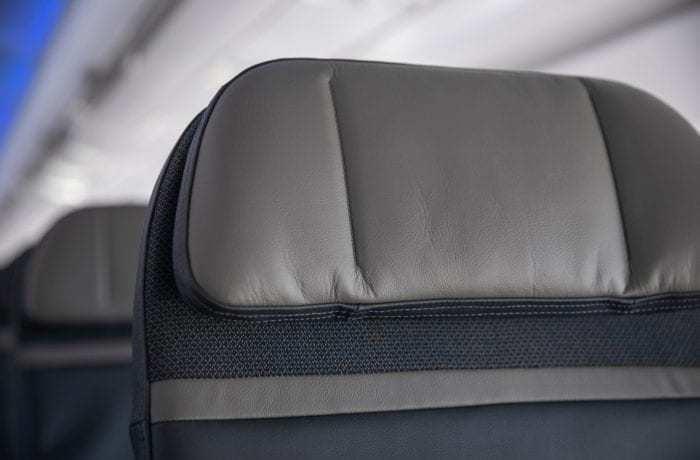 Alaska Airlines Headrest