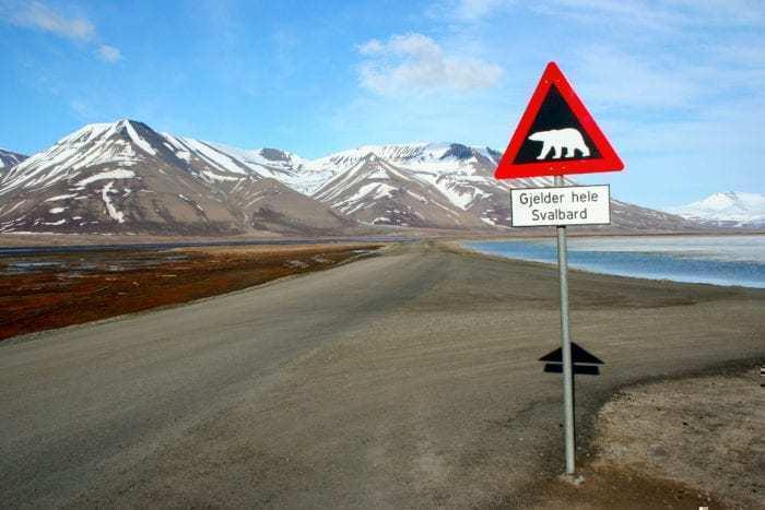Polar_bear_sign_Svalbard