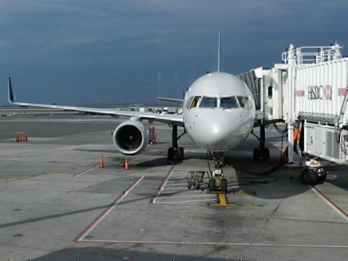 delta passenger storms cockpit