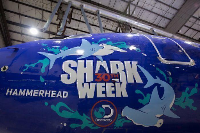 Southwest's Popular Shark Week Returns - Simple Flying