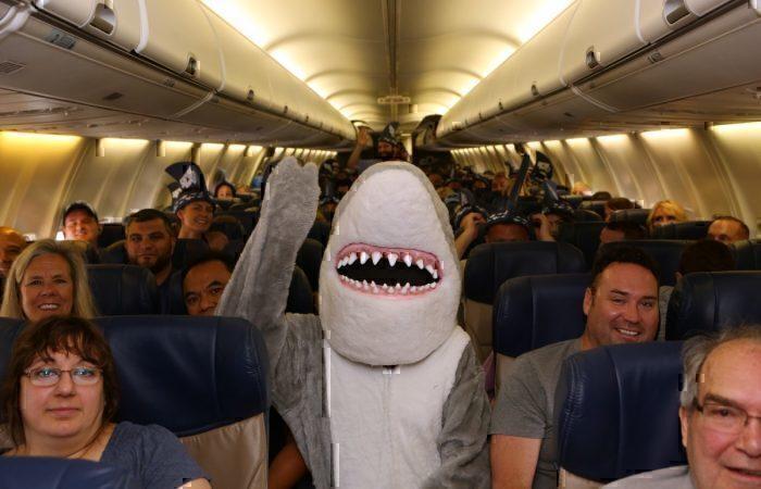 SWA shark
