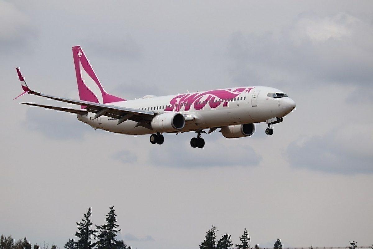 Swoop 737
