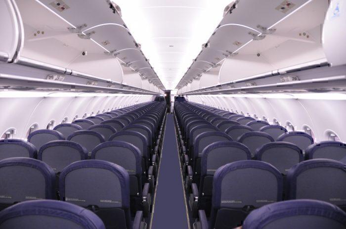 Bat Gets Locked In Spirit Airlines Restroom For 2 Hour Flight