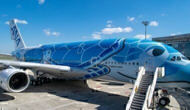 ANA A380 Special Livery