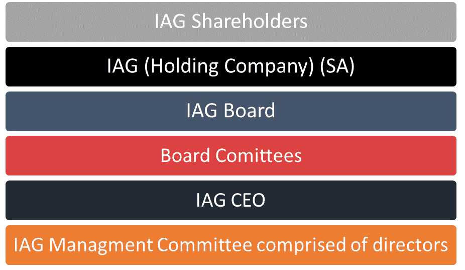 IAG Governance Structure