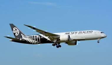 air-new-zealand-measles-scare