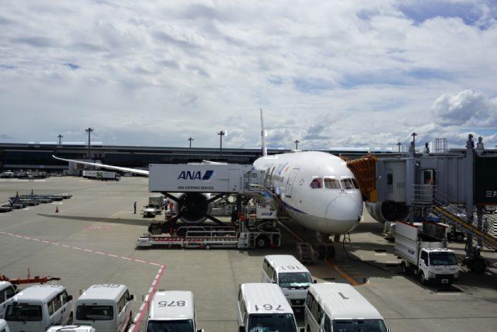 ANA 787, Dreamliner