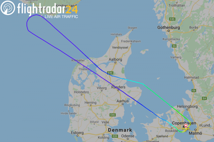 SAS, Airbus A330, Bird Strike