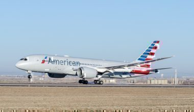 An American Airlines Boeing 787