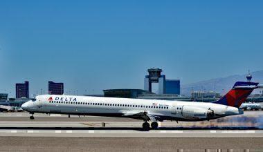 Delta Air Lines, MD90, Birdstrike