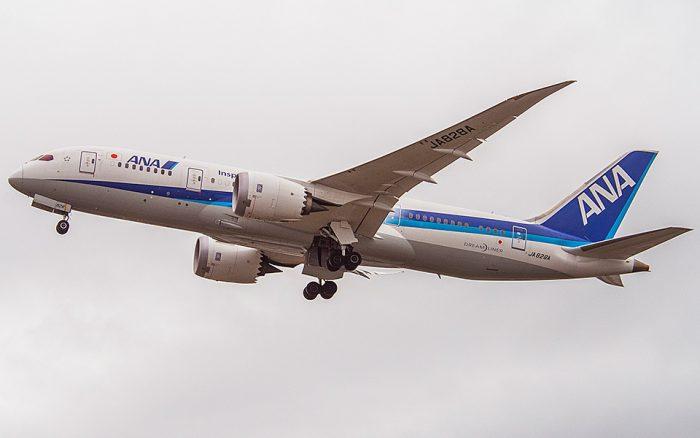 ANA 787 Aircraft