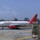 Air India Rat