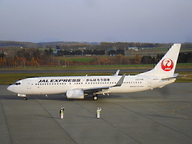 JAL 737-800