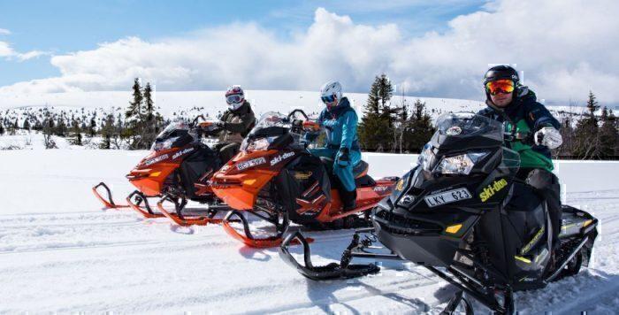 Ski doo transfer