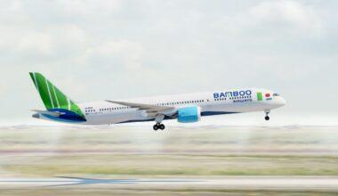 Bamboo 787