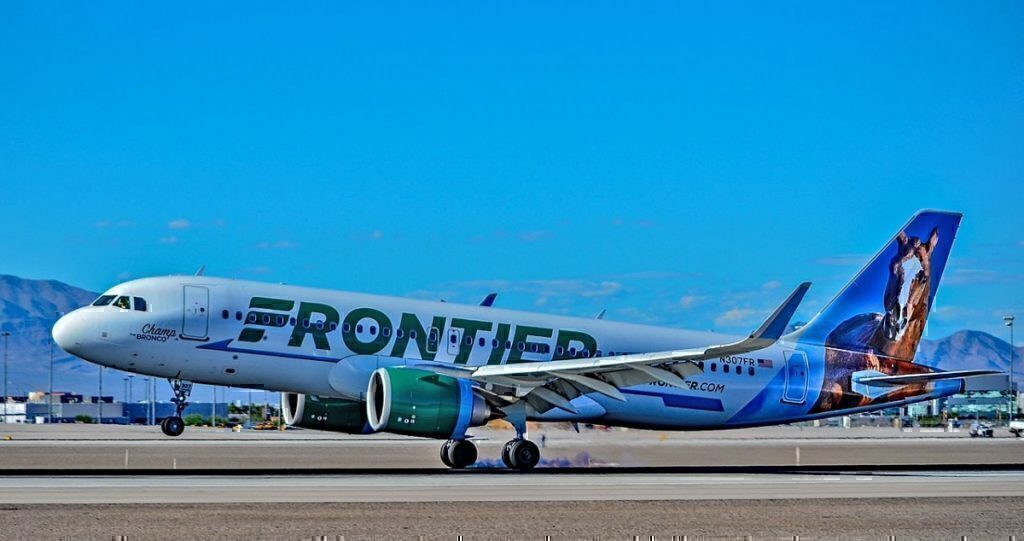 frontier-painted-animal-tails