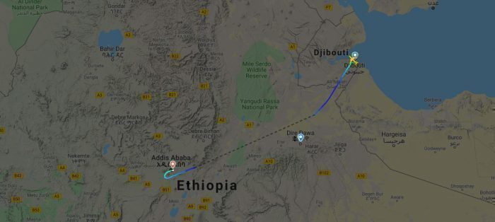 ethiopian-737-grasshopper-swarm