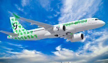 green africa plane