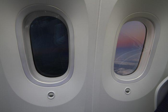 ANA 787 Window