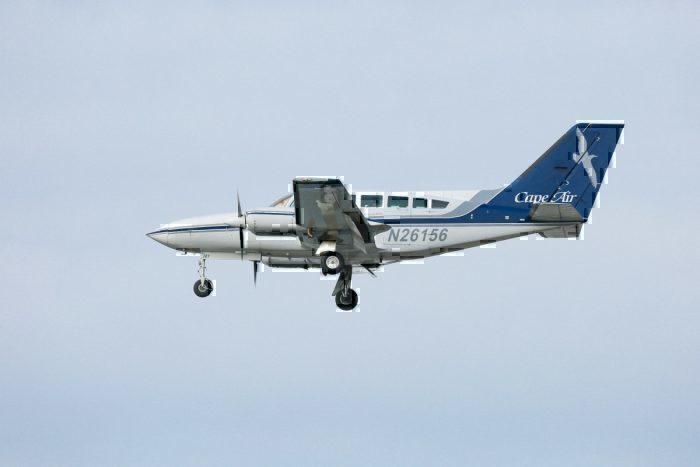 CApe air travelpass