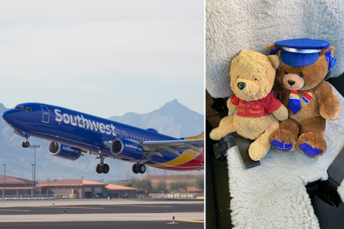 Southwest Airlines, Winnie the Pooh, Lost Teddy