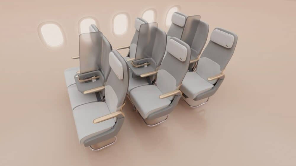 Middle seat privacy screens
