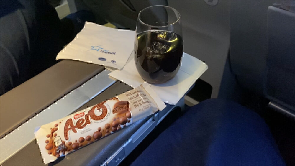 Flying A Now-Retired Aircraft: Air Transat A310 Review