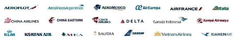 SkyTeam logos