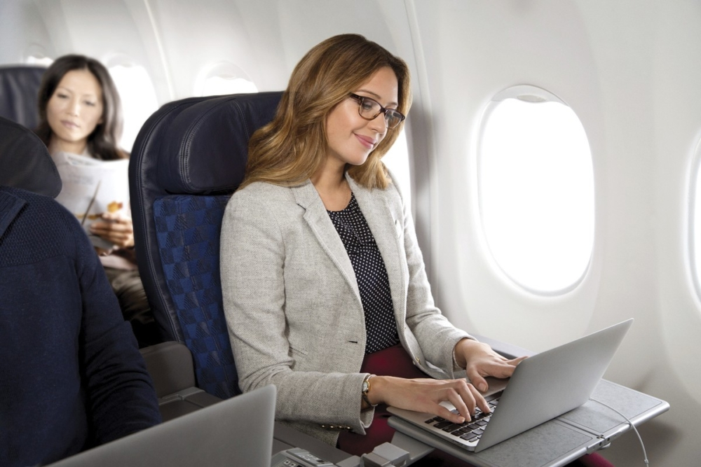 American airlines domestic first