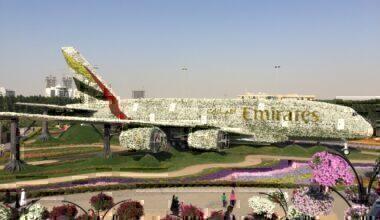Emirates A380 flowers Dubai
