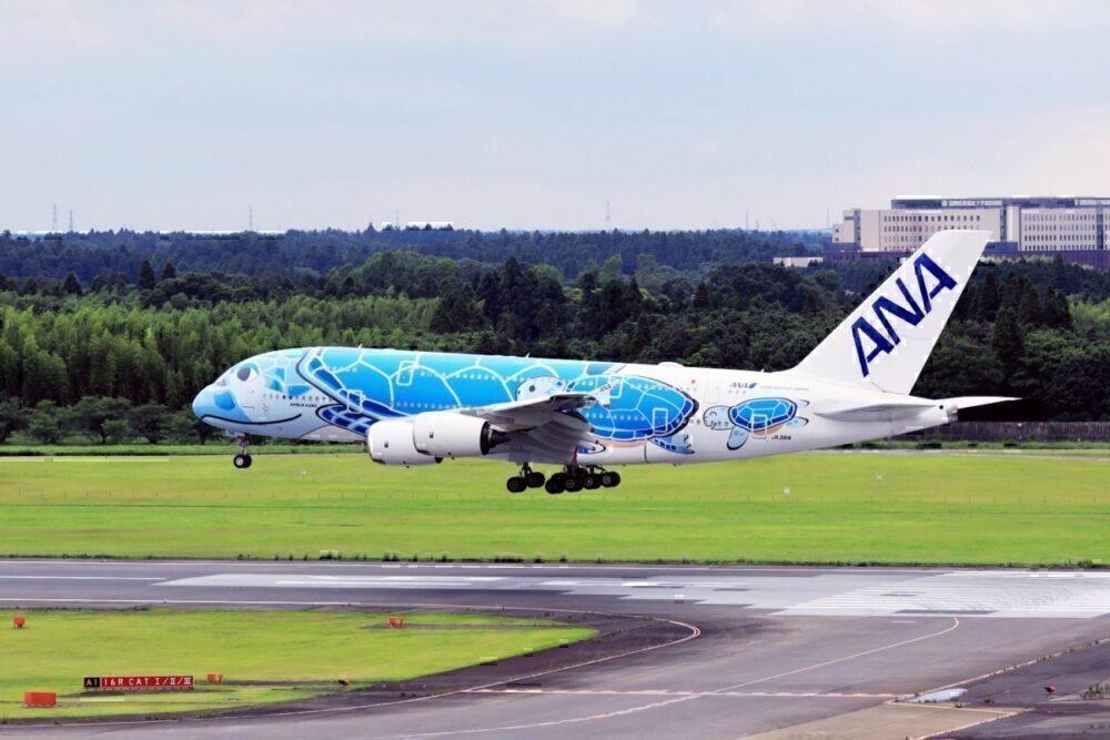 ANA Flying Honu A380