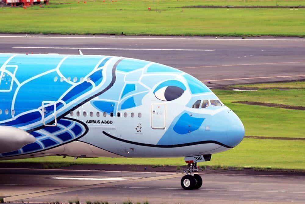 ANA Flying Honu Sky Blue A380
