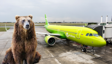 S7 Airlines Bear