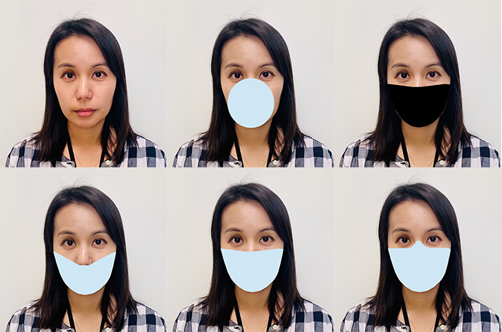 Biometric facial recognition masks