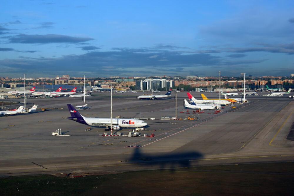 23,000 Baby Chicks Die In Transit At Madrid Barajas Airport