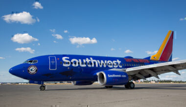 Southwest-boeing-737-bird-strike