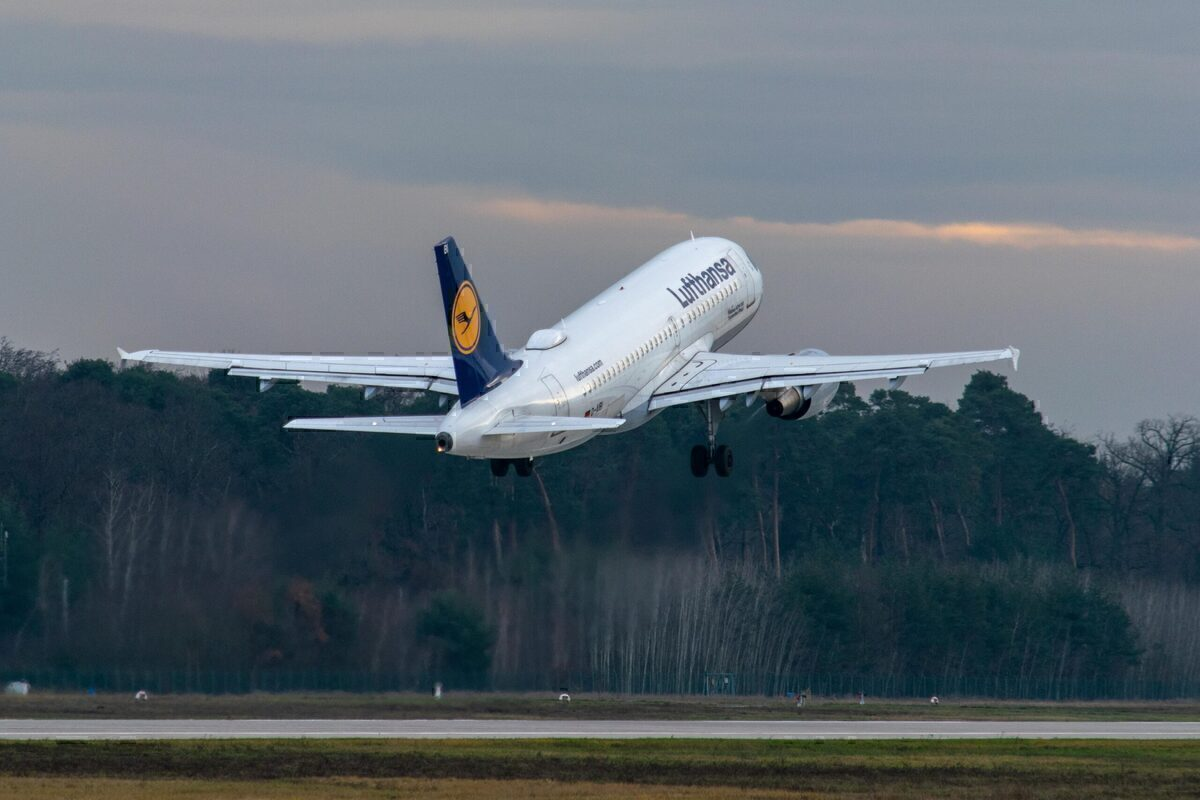 Lufthansa Cityline, Cabin Crew, Safeguard jobs