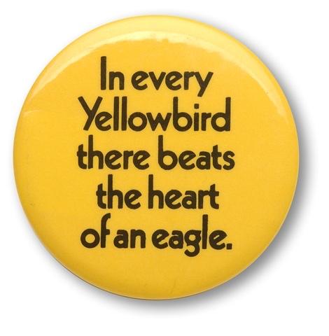 Northeast Yellowbirds
