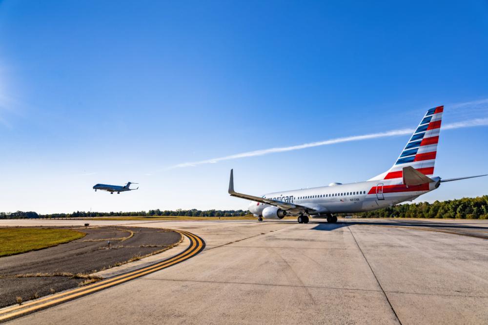 Kangaroo-On-American-Airlines