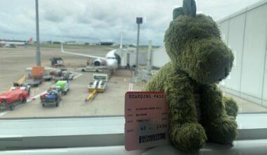 Virgin Australia Stuffed Dinosaur Toy & Boeing 737 Twitter