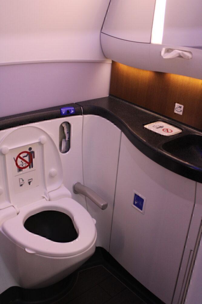 Aircraft lavatory