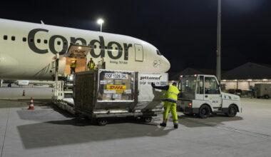Condor Cargo