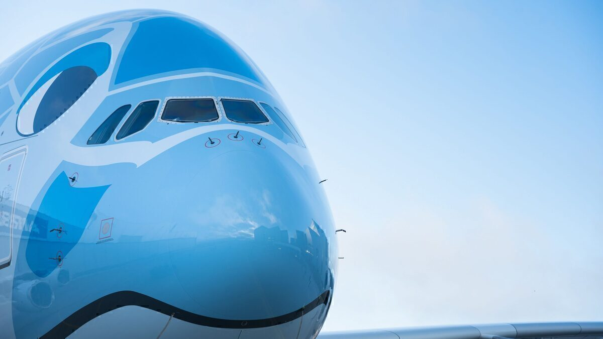 ANA, Airbus A380, Flight to Nowhere