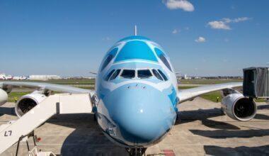 ANA, Airbus A380, 2 years