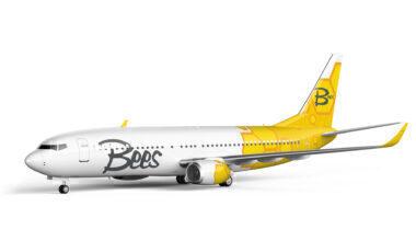 airplane_fleet
