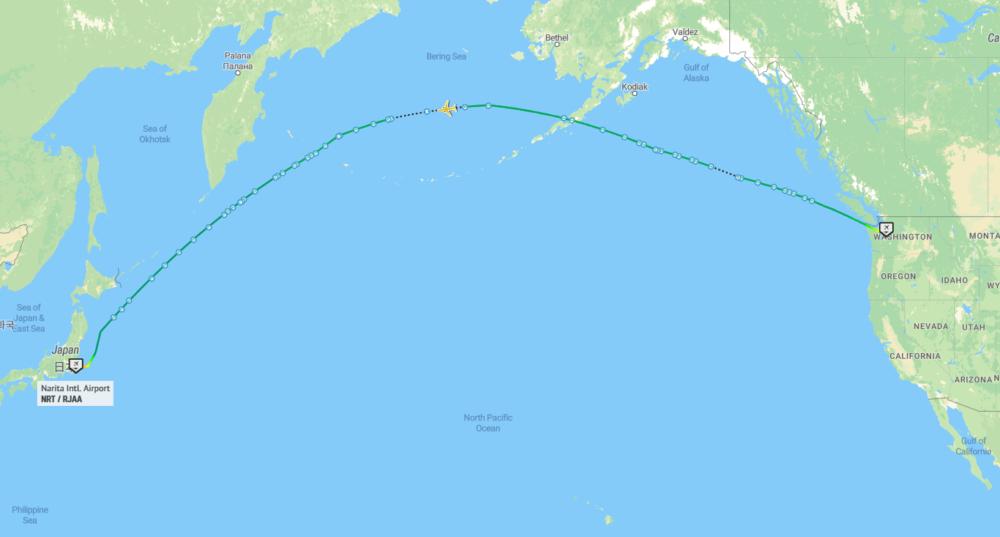 JAL 787 Delivery Flight