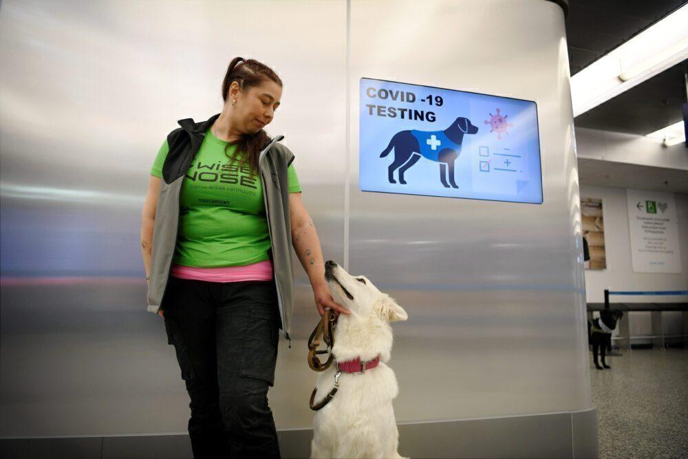 COVID-10 sniffer dog Helsinki Airport